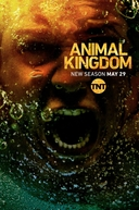 Animal Kingdom (3ª Temporada) (Animal Kingdom (Season 3))