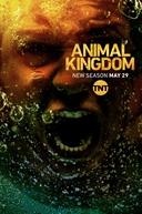 Animal Kingdom (3ª Temporada) (Animal Kingdom (Season 3))