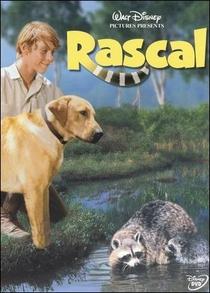 Rascal - Poster / Capa / Cartaz - Oficial 1