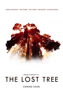 The Lost Tree - Poster / Capa / Cartaz - Oficial 1