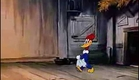 Woody Woodpecker Andy Panda play Frederic Chopin Musical Moments