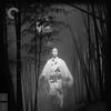 O Gato Preto (Kaneto Shindō, 1968)