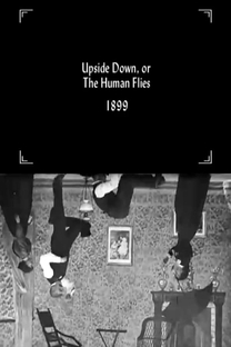 Upside Down; or, The Human Flies - Poster / Capa / Cartaz - Oficial 1