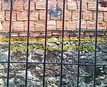Frequência da Sociedade de Barro Paralelepipedal - Poster / Capa / Cartaz - Oficial 1