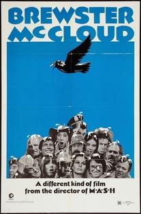 Voar é com os Pássaros - Poster / Capa / Cartaz - Oficial 3