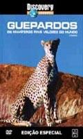 Discovery Channel: Guepardos - Os Mamiferos Mais Velozes do Mundo - Poster / Capa / Cartaz - Oficial 1