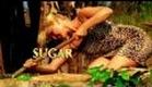 Survivor: Gabon - Intro [HD]