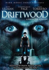 Driftwood - O Reformatório - Poster / Capa / Cartaz - Oficial 4