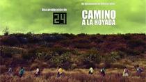 Rumo a La Hoyada - Poster / Capa / Cartaz - Oficial 1