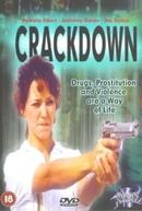 Cidade Partida (L.A. Crackdown)