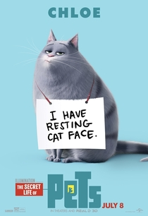 Pets: A Vida Secreta dos Bichos - Poster / Capa / Cartaz - Oficial 3