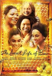 A Vida Secreta das Abelhas - Poster / Capa / Cartaz - Oficial 4