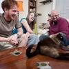 'Meu Gato Endiabrado' dá dicas para educar bichanos bagunceiros