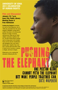 Pushing The Elephant - Poster / Capa / Cartaz - Oficial 2