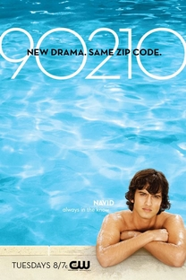 90210 (1ª Temporada) - Poster / Capa / Cartaz - Oficial 9
