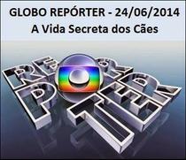 Globo Repórter – A Vida Secreta dos Cães - Poster / Capa / Cartaz - Oficial 1