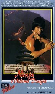 Ninja - O Último Dragão - Poster / Capa / Cartaz - Oficial 2