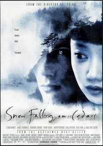 Neve Sobre os Cedros - Poster / Capa / Cartaz - Oficial 1
