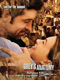 A Anatomia de Grey (5ª Temporada) - Poster / Capa / Cartaz - Oficial 3