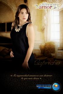 Por Siempre Mi Amor - Poster / Capa / Cartaz - Oficial 8