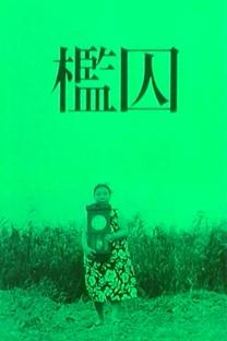 A Jaula - Poster / Capa / Cartaz - Oficial 1