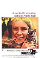 A Menina das Selvas (The Bushbaby)