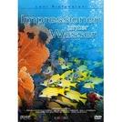 Impressões Submarinas (Impressionen unter Wasser)
