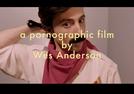 A porn by Wes Anderson (A porn by Wes Anderson)