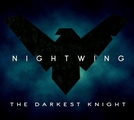 Nightwing - The Darkest Knight (Nightwing - The Darkest Knight)