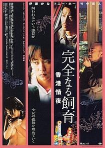 Perfect Education 3 - Poster / Capa / Cartaz - Oficial 1
