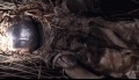 The Wicker Man - Trailer