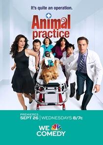 Animal Practice (1ª Temporada) - Poster / Capa / Cartaz - Oficial 1