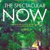 "Crítica: O Maravilhoso Agora (""The Spectacular Now"") | CineCríticas"