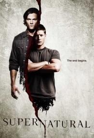 Sobrenatural (6ª Temporada) - Poster / Capa / Cartaz - Oficial 3