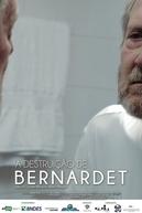 A destruição de Bernardet (A destruição de Bernadet)