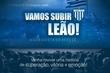 Vamos Subir Leão - A conquista do Acesso (Avaí Futebol Clube)