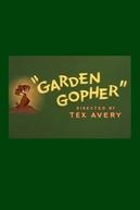 Toupeira de Jardim (Garden Gopher)