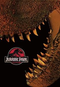 Jurassic Park - O Parque dos Dinossauros - Poster / Capa / Cartaz - Oficial 6