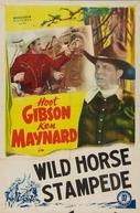 O Mistério do Desfiladeiro (Wild Horse Stampede)