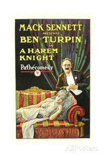 Um Cavaleiro no Harém - Poster / Capa / Cartaz - Oficial 1