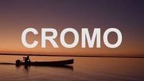 Cromo (1º Temporada) - Poster / Capa / Cartaz - Oficial 1