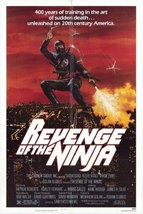 A Vingança do Ninja - Poster / Capa / Cartaz - Oficial 1