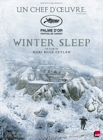 Sono de Inverno - Poster / Capa / Cartaz - Oficial 4