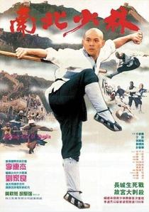 O Templo de Shaolin 3: As Artes Marciais de Shaolin - Poster / Capa / Cartaz - Oficial 1