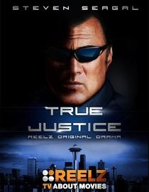 True Justice (1ªTemporada) - Poster / Capa / Cartaz - Oficial 1