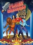 Flash Gordon (The New Adventures of Flash Gordon)