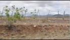 SER-TÃO INOCENTE: As Crianças de Monte Santo (Trailer)