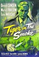 Tigre no Fumo (Tiger in The Smoke)