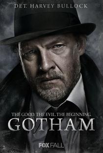 Gotham (1ª Temporada) - Poster / Capa / Cartaz - Oficial 8
