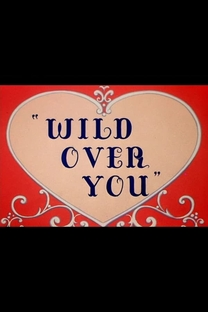 Wild Over You - Poster / Capa / Cartaz - Oficial 2